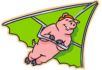 Was That A Pig Flying Past the Window or Do You Actually Measure Organic Success?