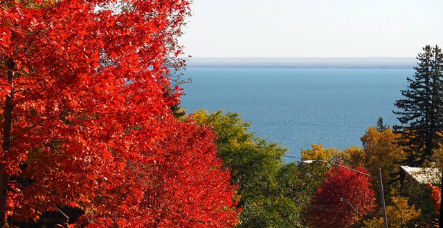 lake-superior-foliage