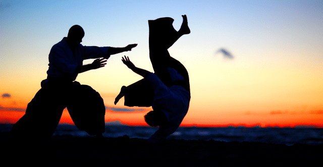 Two ninja silhouettes fight at daybreak as we introduce our post, 10 Excel Marketing Ninja Moves! Ditch Tedious Formatting & Annoying Adjustments.