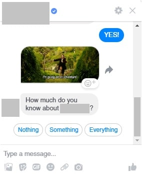Screen cap of a Facebook Messenger chatbot interaction based on user response