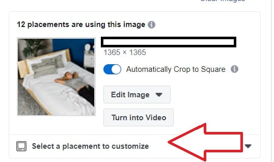 Screen cap of option to customize an image by placement in Facebook and Instagram ads